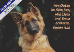 Postkarten Hunde - 6 Stück