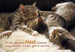 In ein warmes Nest - Faltkarte